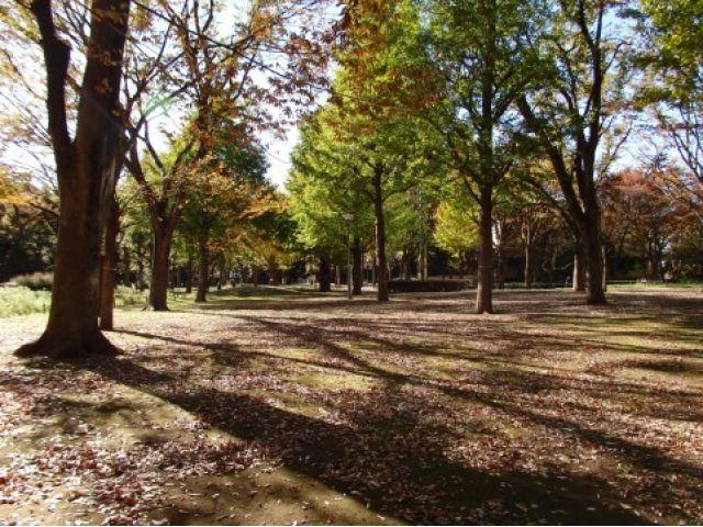 きららっこ石神井公園保育園